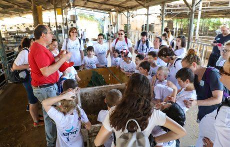 נופשים ונהנים: מחנה ייחודי לעשרות ילדים על הספקטרום האוטיסטי